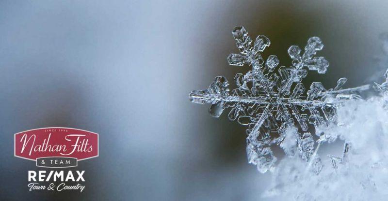 snowflakes close up shot